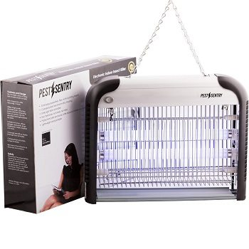 Pest Sentry Electronic Indoor Insect Killer Review