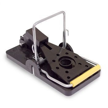Knees Mfg 102-0-019 Snap-E Mouse Trap Review
