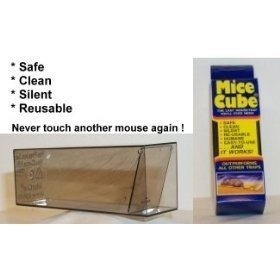 The Mice Cube 12 Pack Review